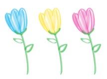 Tulipanes del cepillo de cerda Fotos de archivo