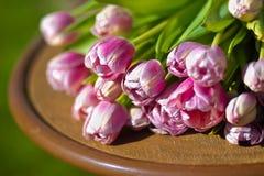 Tulipanes del ramo Fotografía de archivo libre de regalías