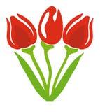 Tulipanes del vector Fotos de archivo