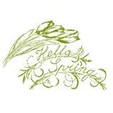 Tulipanes e inscripción de la primavera hola libre illustration