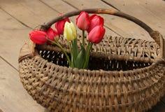 Tulipanes en cesta imagenes de archivo