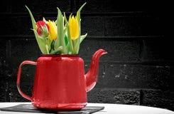 Tulipanes en el crisol rojo Foto de archivo libre de regalías