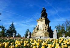 Tulipanes en el festival de Amsterdam Tulp Imágenes de archivo libres de regalías