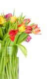 Tulipanes en el florero Fotografía de archivo