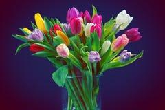 Tulipanes en el florero de cristal Fotografía de archivo