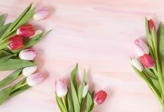 Tulipanes en el fondo en colores pastel de la acuarela para el resorte Foto de archivo libre de regalías