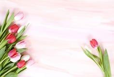 Tulipanes en el fondo en colores pastel de la acuarela para el resorte Fotografía de archivo libre de regalías