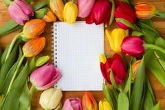 Tulipanes en el vector de madera Fotografía de archivo