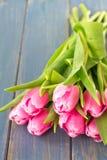Tulipanes en fondo azul Fotografía de archivo libre de regalías