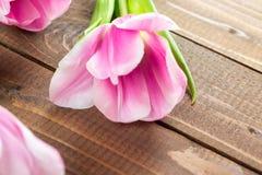 Tulipanes en fondo de madera Fotos de archivo