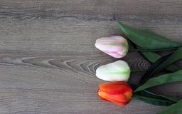 Tulipanes en fondo de madera con el espacio de la copia para el mensaje Fondo del día del ` s de la madre Visión superior Imagen de archivo libre de regalías