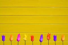 Tulipanes en fondo de madera pintado amarillo fotografía de archivo