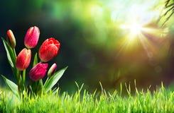 Tulipanes en hierba en Sunny Meadow Imagen de archivo libre de regalías