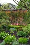 Tulipanes en jardín emparedado en la abadía de Mottisfont, Hampshire, Inglaterra Foto de archivo libre de regalías