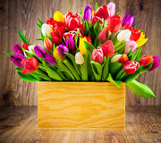 Tulipanes en la caja Imagen de archivo