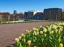 Tulipanes en Liberty Square en Tallinn Fotografía de archivo libre de regalías