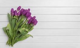 Tulipanes en los tableros blancos Imágenes de archivo libres de regalías