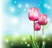 Tulipanes en parque Stock de ilustración