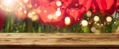 Tulipanes en primavera con la tabla de madera Imágenes de archivo libres de regalías