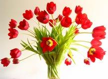 Tulipanes en un florero foto de archivo libre de regalías