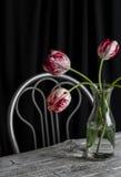 Tulipanes en una botella de cristal Imagenes de archivo