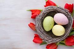 Tulipanes, flores de la primavera y decoración rojos de Pascua Imagenes de archivo