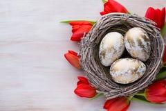 Tulipanes, flores de la primavera y decoración rojos de Pascua Foto de archivo libre de regalías
