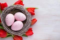 Tulipanes, flores de la primavera y decoración rojos de Pascua Fotos de archivo libres de regalías