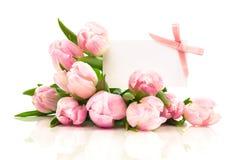 Tulipanes hermosos con con el espacio en blanco para el texto Imagen de archivo