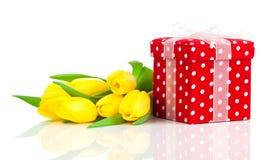 Tulipanes hermosos con la caja de regalo roja del lunar. Imagen de archivo libre de regalías