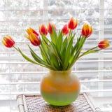 Tulipanes hermosos en florero en la tabla cerca de la ventana Imagenes de archivo