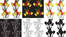 Tulipanes inconsútiles de las flores del modelo Imagenes de archivo