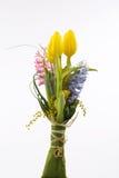 tulipanes, jacinto sobre el fondo blanco Fotos de archivo