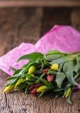 Tulipanes Los tulipanes de la primavera sueltan en la tabla de roble fotos de archivo libres de regalías