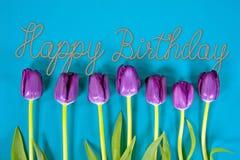 Tulipanes púrpuras del cumpleaños Imagen de archivo