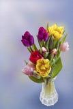 Tulipanes para Pascua Imágenes de archivo libres de regalías