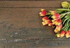 Tulipanes que ponen en una tabla foto de archivo
