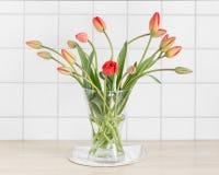 Tulipanes rojos delante de los azulejos Foto de archivo