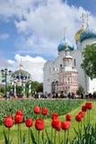 Tulipanes rojos en el cuadrado de la catedral - St Sergius Lavra Fotos de archivo libres de regalías