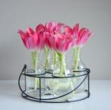 Tulipanes rojos en los floreros de cristal fotografía de archivo libre de regalías
