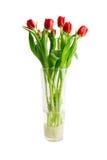 Tulipanes rojos en un florero de cristal Imagen de archivo