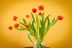 Tulipanes rojos en un florero de cristal en la tabla del mosaico. Fotografía de archivo