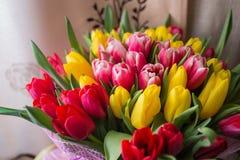 Tulipanes rojos y amarillos Imágenes de archivo libres de regalías