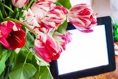 Tulipanes rojos y blancos y marco electrónico de la foto Fotos de archivo libres de regalías