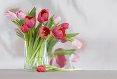 Tulipanes rojos y rosados en un florero - b reflexivo brillante foto de archivo libre de regalías