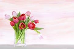 Tulipanes rojos y rosados en un florero - backgr de la acuarela Foto de archivo libre de regalías