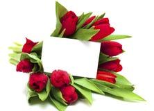 Tulipanes rojos y tarjeta en blanco Fotos de archivo libres de regalías
