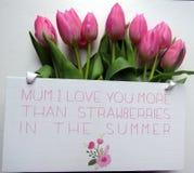 Tulipanes rosados del día de madres Fotografía de archivo libre de regalías