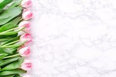 Tulipanes rosados en el fondo de mármol blanco Primavera y celebración c Imagen de archivo