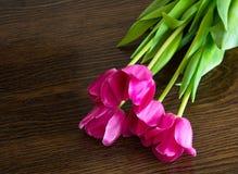 Tulipanes rosados en fondo marrón Foto de archivo libre de regalías